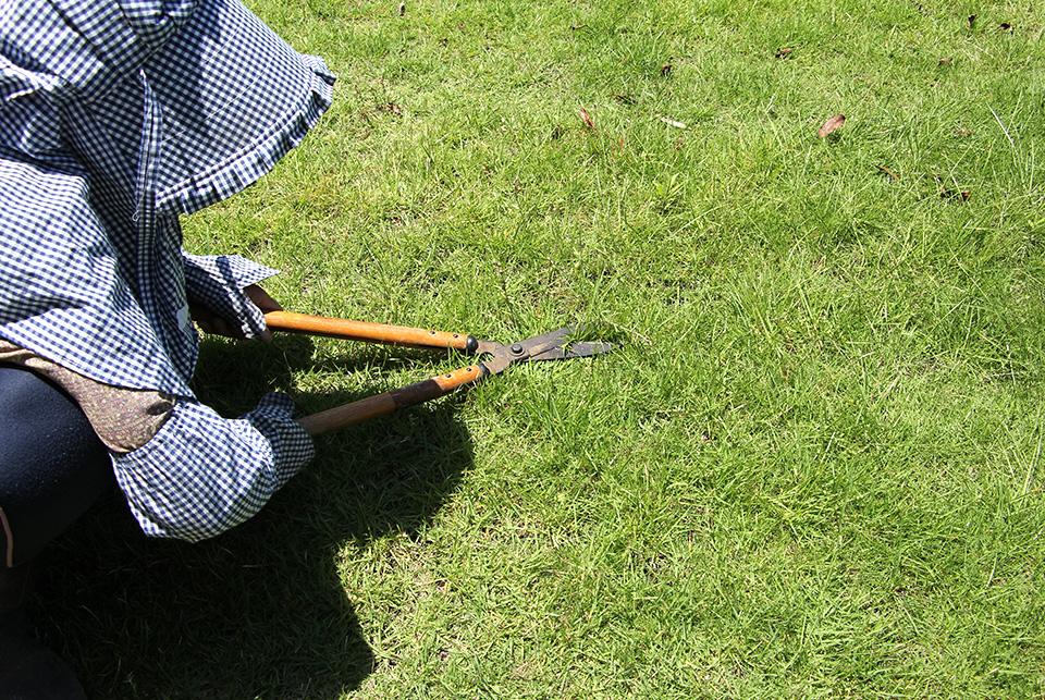 芝張り・草刈り